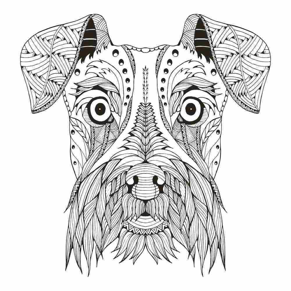 Mandalas de animales 3