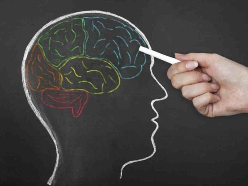 neurociencia para mejorar la educación