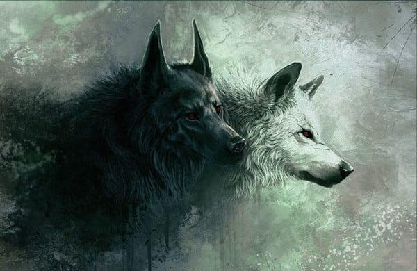 Qué lobo alimentas