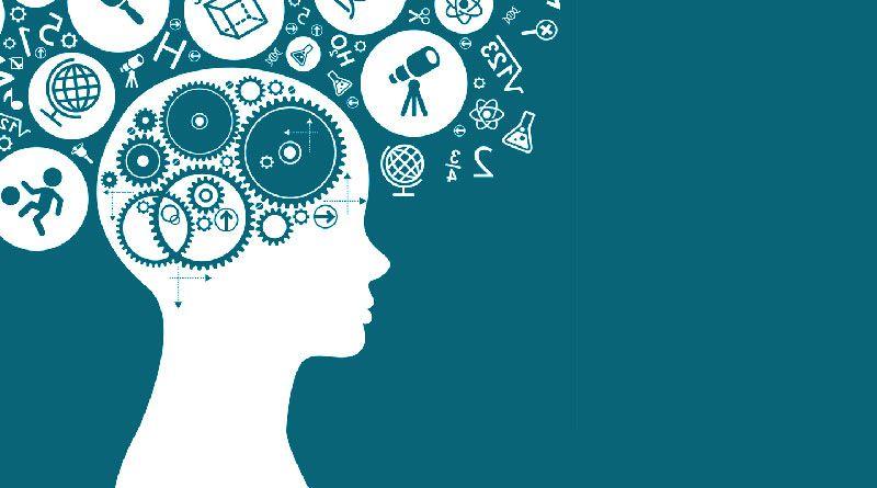 Formación en neuroeducación y psicología