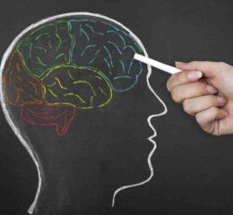 Aportes de la neurociencia para mejorar la educación